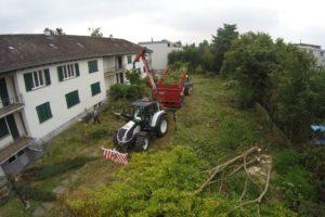Baumfällarbeiten_9